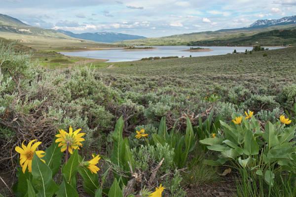 Photograph - Summer Green Mountain Reservoir Landscape by Cascade Colors