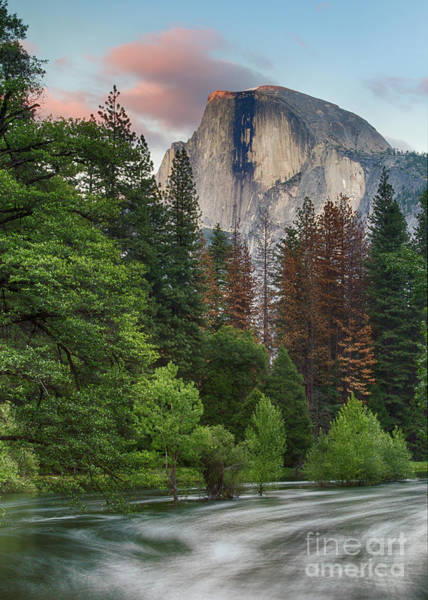 Photograph - Summer Half Dome  by Brandon Bonafede