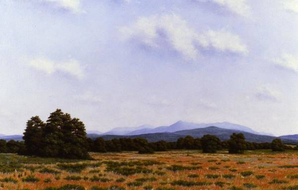 Adirondack Mountains Painting - Summer In The High Peaks Of The Adirondacks by Anthony Petchkis