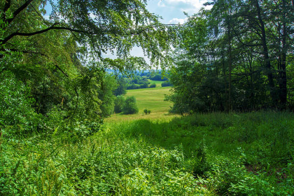 Photograph - Summer In Vogelsberg by Sun Travels
