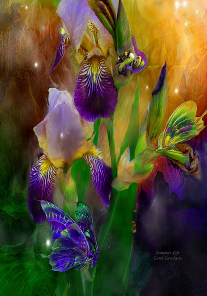 Purple Iris Mixed Media - Summer Life by Carol Cavalaris