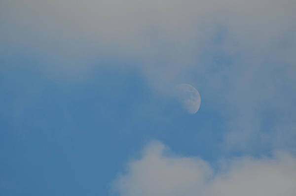 Photograph - Summer Moon by JAMART Photography