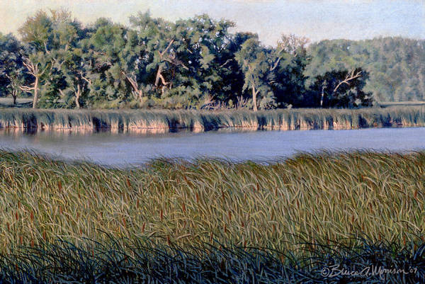 Drawing - Summer Morning On The Slough by Bruce Morrison