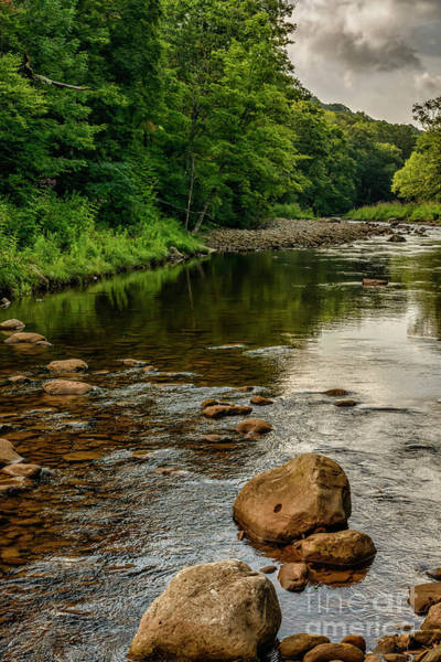 Trout Stream Photograph - Summer Morning Williams River by Thomas R Fletcher