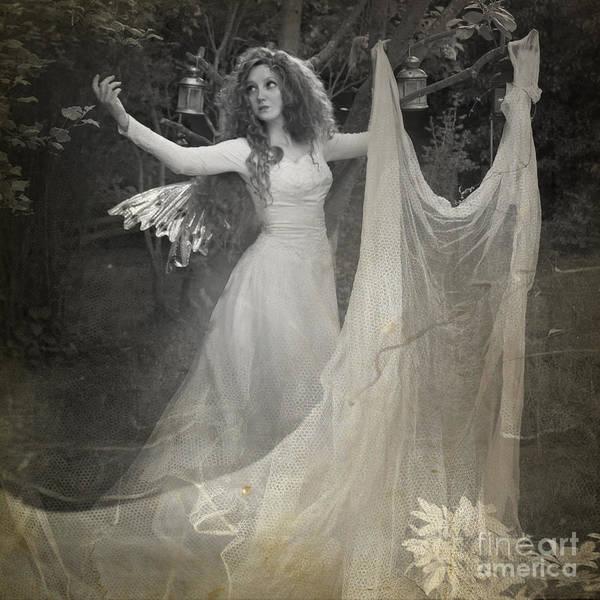 Wall Art - Photograph - Summer Night Fairy by Angel Ciesniarska