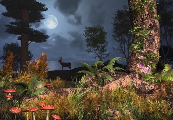 Digital Art - Summer Night Magic by Mary Almond