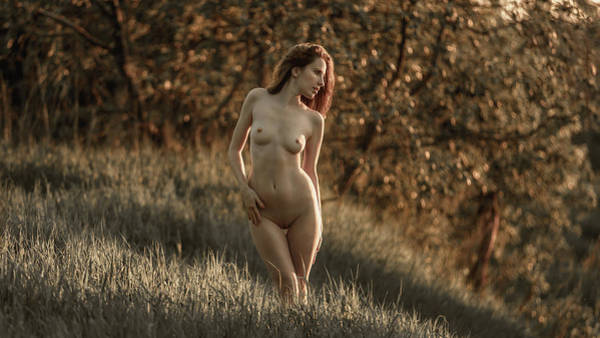Photograph - Summer Nymph by Dmitry Laudin