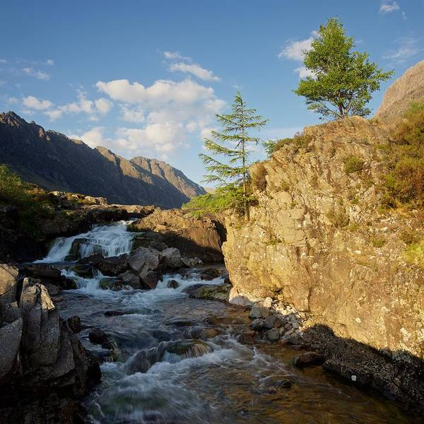 Photograph - Summer On The River Coe by Stephen Taylor