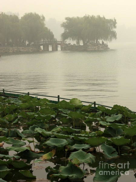 Photograph - Summer Palace Serenity by Carol Groenen