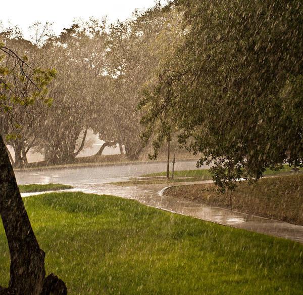 Photograph - Summer Rain by Robert Harshman