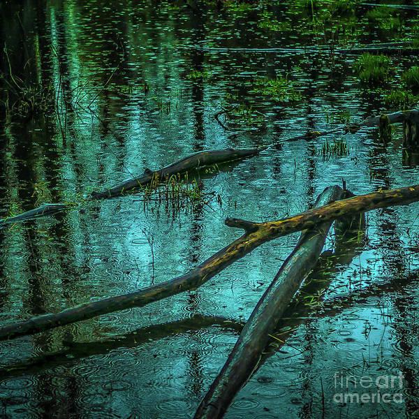 Photograph - Summer Rain by Roger Monahan