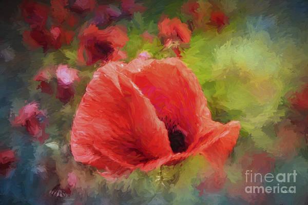 Digital Art - Summer Red by Jutta Maria Pusl