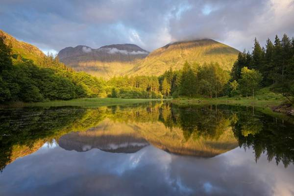 Photograph - Summer Reflections At The Torren Lochan by Stephen Taylor