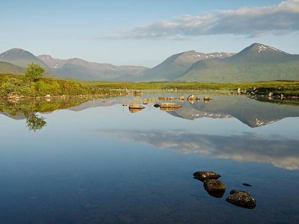 Photograph - Summer Reflections On Rannoch Moor by Stephen Taylor