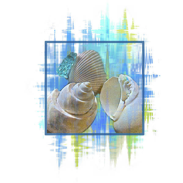 Digital Art - Summer Shells by Gina Harrison