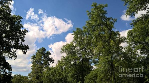 Photograph - Summer Sky by Tammie J Jordan