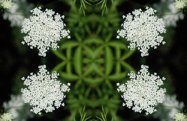 Wall Art - Digital Art - Summer Snowflakes Design by Alynne Landers
