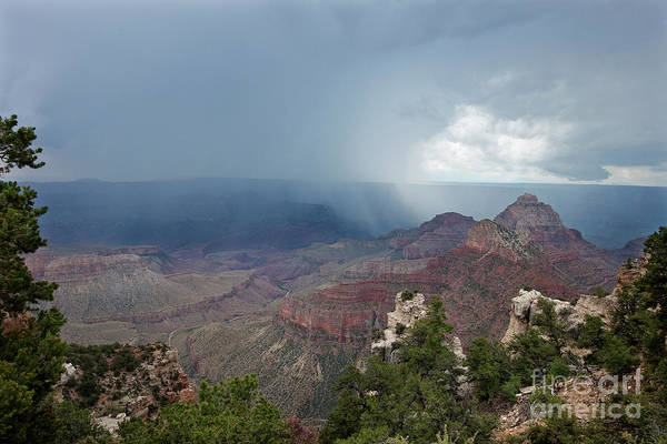 Photograph - Summer Storm North Rim Grand Canyon National Park Arizona by Dave Welling