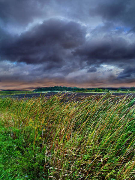 Natur Wall Art - Photograph - Summer Storms by Phil Koch
