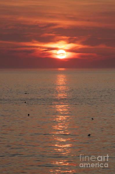 Photograph - Summer Sunrise Rockport, Ma by Michael Mooney