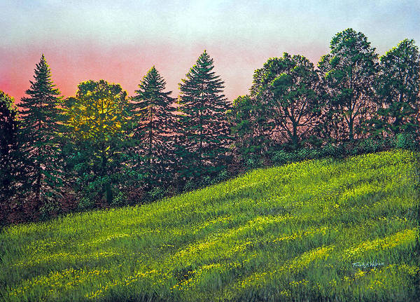 Painting - Summer Sunset by Frank Wilson
