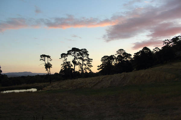Photograph - Summer Sunset In Yarra Glen 26-01-2015 by Bert Ernie