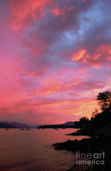Photograph - Summer Sunset by Victor K