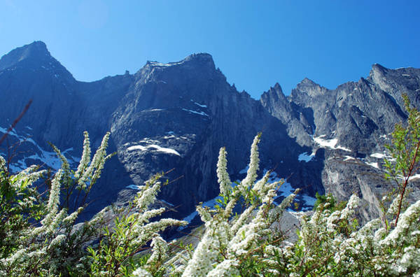 Troll Photograph - Summer Time At Troll Wall by Terence Davis