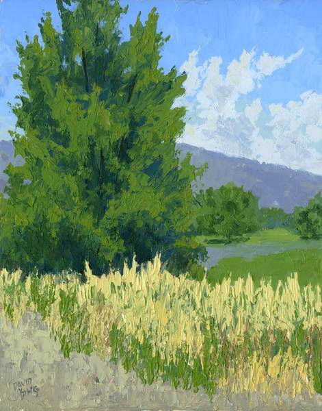 Painting - Summer Tree by David King