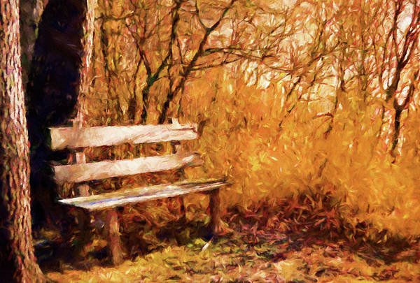 Photograph - Summer Warmth Impressionism by Isabella Howard