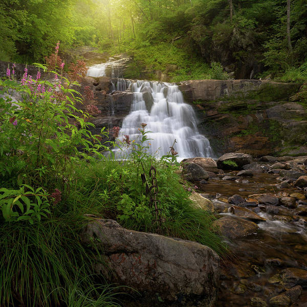 Photograph - Summer Waterfall Square by Bill Wakeley