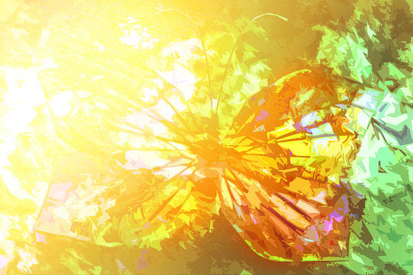 Showpiece Digital Art - Summer's Day by Andy Young