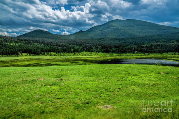 Photograph - Summertime And The Living Is Easy by Jon Burch Photography