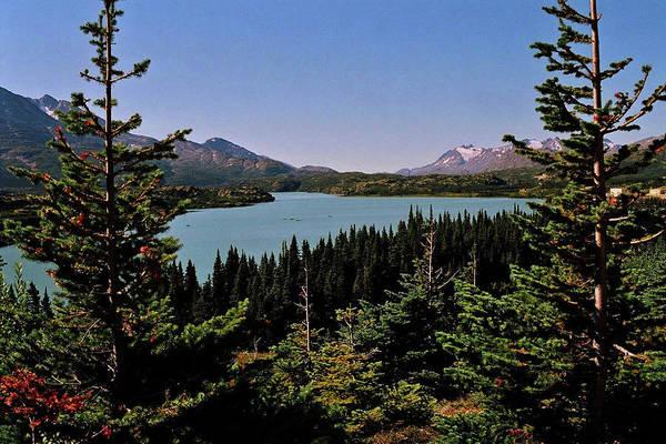 Photograph - Tagish Lake - Yukon by Juergen Weiss