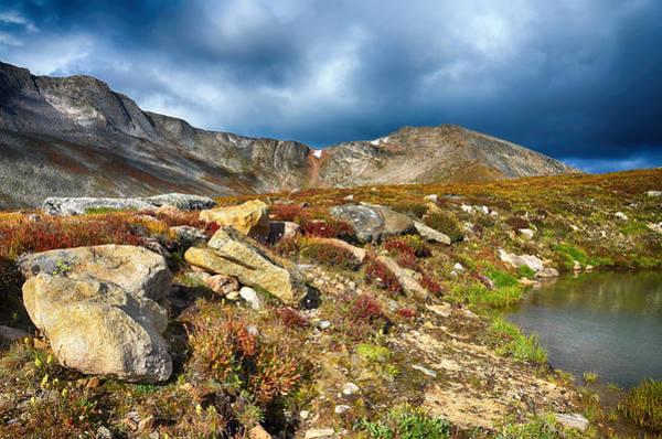 Photograph - Summit Lake Tundra by Angelina Tamez