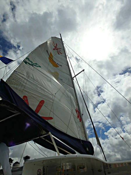 Photograph - Sun And Sail by Kimberly Perry