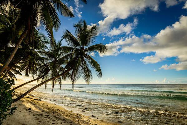Photograph - Sun Behind The Beach by Michael Scott