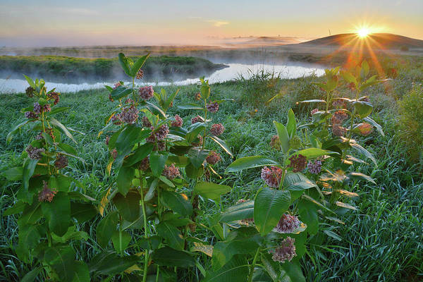 Photograph - Sun Breaks The Horizon In Glacial Park by Ray Mathis