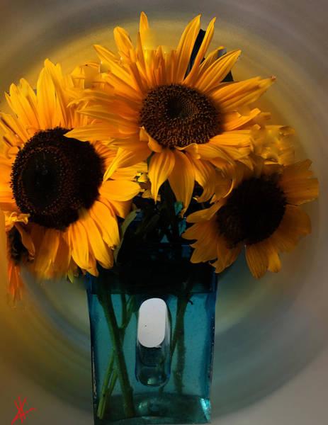 Photograph - Sun Flower Joy  by Colette V Hera  Guggenheim