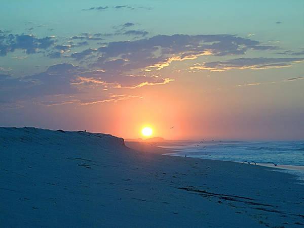 Photograph - Sun Glare by  Newwwman