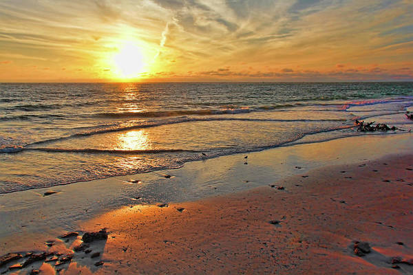 Wall Art - Photograph - Sun Glow by HH Photography of Florida