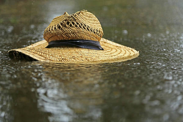 Photograph - Sun Hat In The Rain by Bob Cournoyer