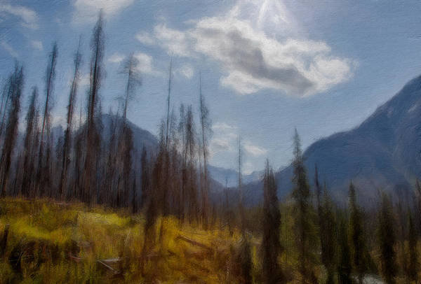 Digital Art - Sun Light In The Forest by Eduardo Tavares