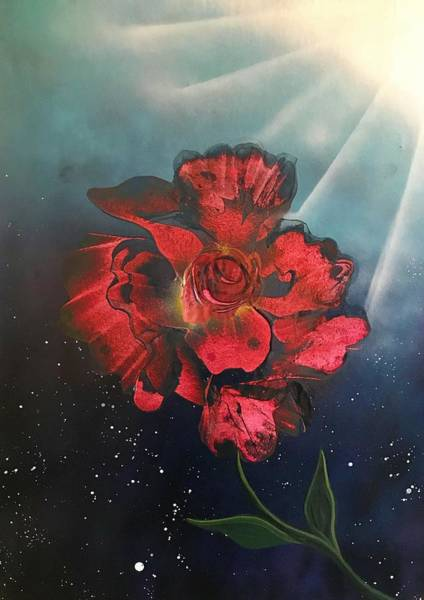 Wall Art - Painting - Sun Lit Flower by Willy Proctor