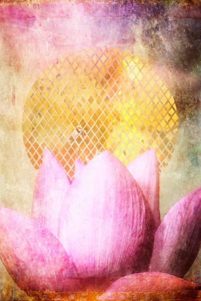 Pink Lotus Flower Photograph - Sun Lotus by MGL Meiklejohn Graphics Licensing