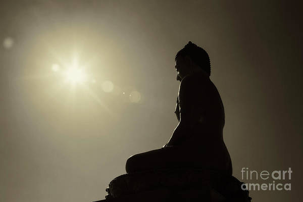Photograph - Sun On Buddha by Scott Kemper