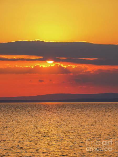 Photograph - Sun by Rachel Cohen