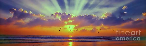 Photograph - Sun Rise East Coast Fl Daytona Beach With Birds by Tom Jelen
