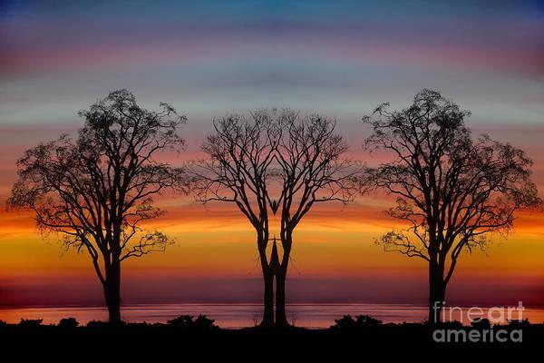Photograph - Sun Salutation by Andrea Kollo
