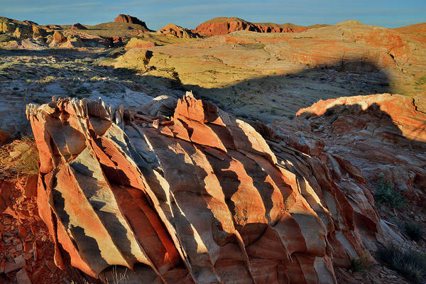 Photograph - Sun Setting On Rows Of Sandstone In Valley Of Fire by Ray Mathis